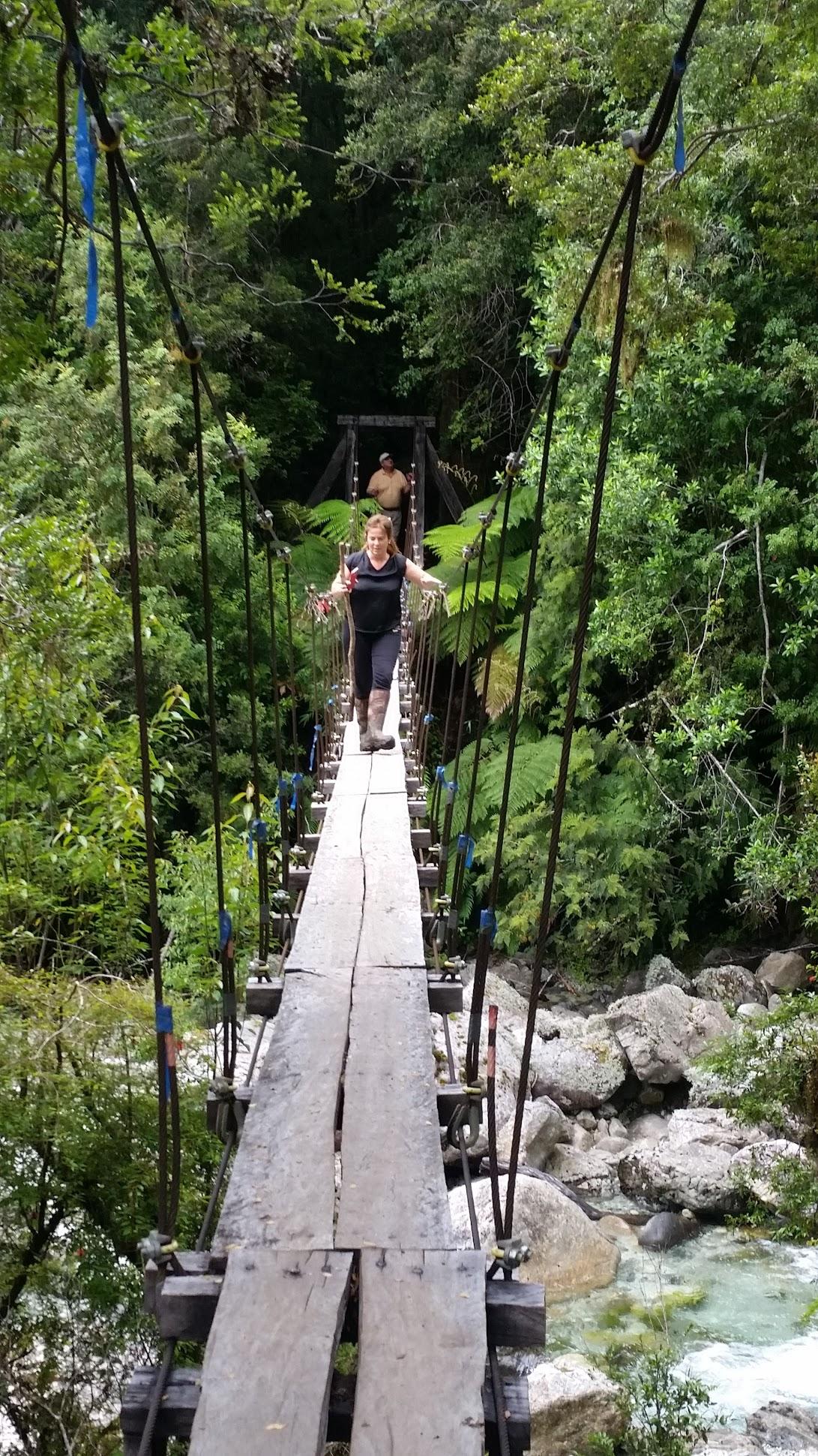 El puente colgante que cruza el Río Piedra en el sendero a La Junta.