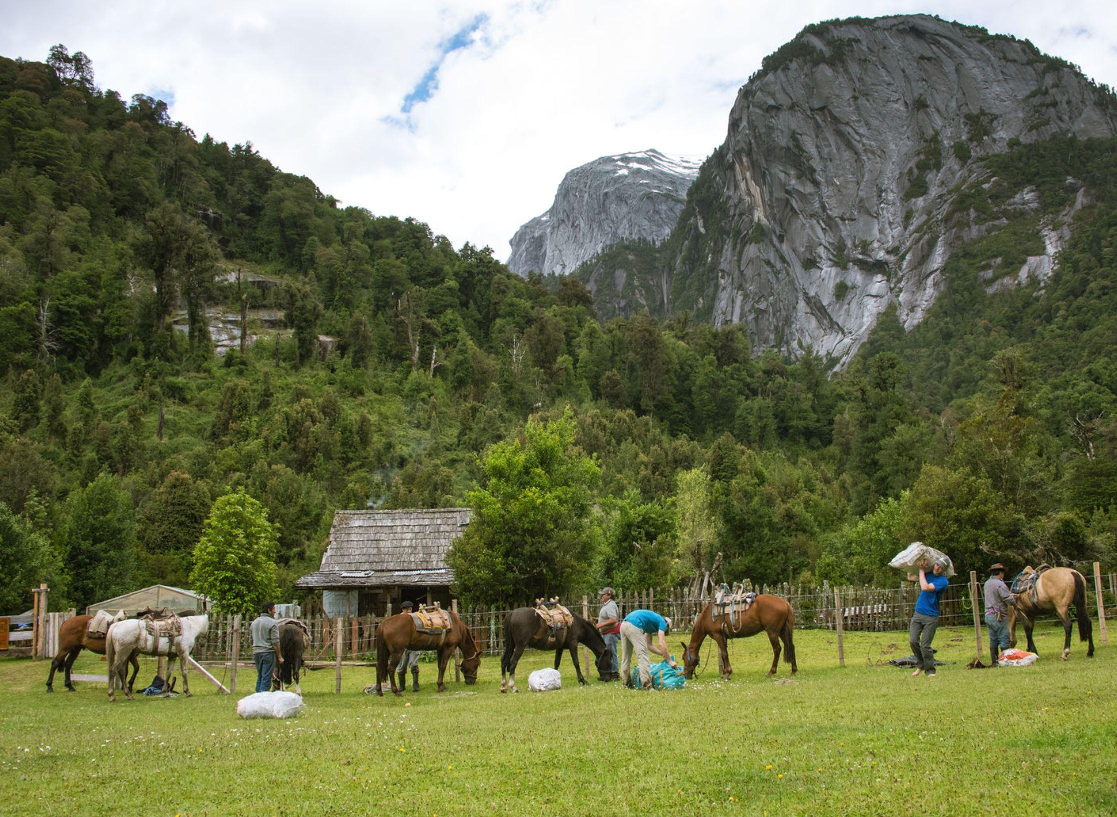 Arrieros y sus caballos descargan sus bultos de mochilas en Camping La Junta.